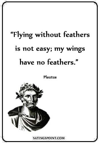 "air force sayings and quotes- ""Flying without feathers is not easy; my wings have no feathers."" —Plautus"