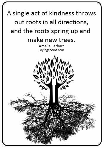 """quote about generosity - """"A single act of kindness throws out roots in all directions, and the roots spring up and make new trees."""" —Amelia Earhart"""