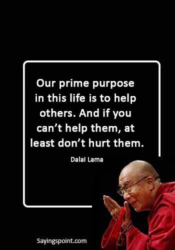 """inspirational quotes hurt - """"Our prime purpose in this life is to help others. And if you can't help them, at least don't hurt them."""" —Dalai Lama"""