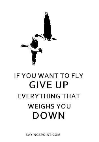 """If you want to fly. Give up everything that weighs you down."