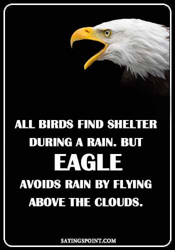 """All Birds find shelter during a rain. But Eagle avoids rain by flying above the Clouds."