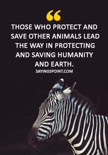 """Save Wildlife Quotes - """"Those who protect and save other animals lead the way in protecting and saving humanity and earth."""""""