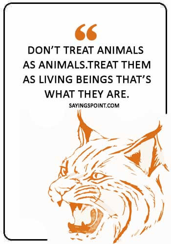 """Save Wildlife Quotes - """"Don't treat animals as animals.Treat them as living beings that's what they are."""""""