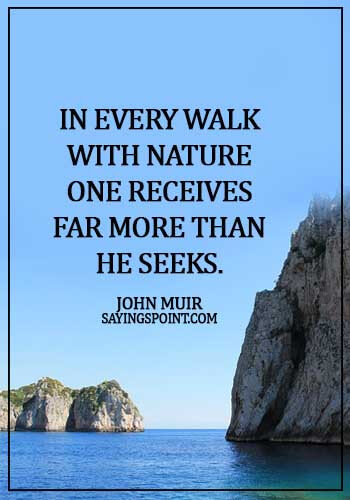 Nature Sayings - In every walk with nature one receives far more than he seeks. - John Muir