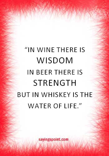 "funny quotes about drinking alcohol - ""In wine there is wisdom, in beer there is freedom, in water there is bacteria."" —Benjamin Franklin"