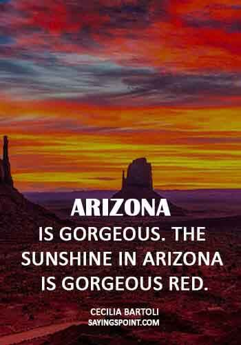 Arizona Sayings - All the great pleasures of life are silent. - Georges Clemenceau