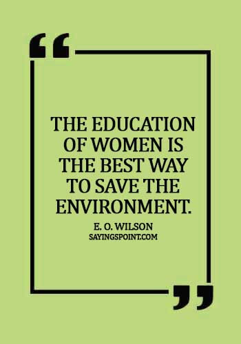 Environment Sayings - The education of women is the best way to save the environment.