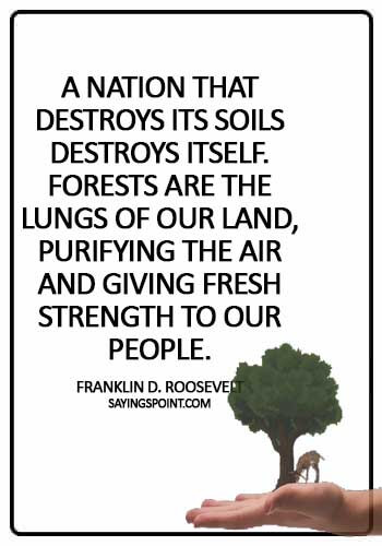 "Save Environment Quotes - ""A nation that destroys its soils destroys itself. Forests are the lungs of our land, purifying the air and giving fresh strength to our people."" —Franklin D. Roosevelt"