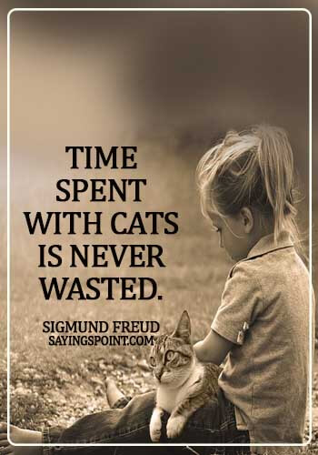 Cat  Sayings - Time spent with cats is never wasted. - Sigmund Freud