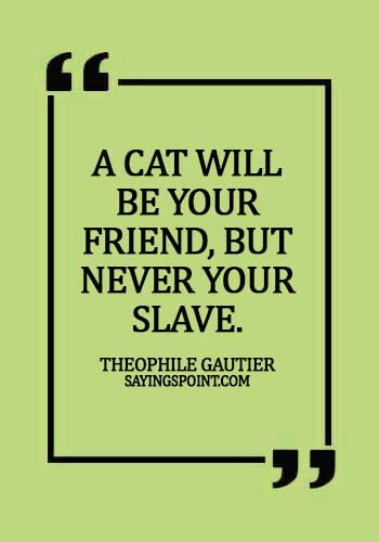 Cat Quotes - A cat will be your friend, but never your slave. - Theophile Gautier