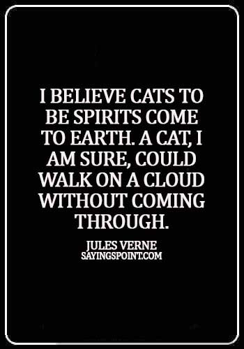 cool cat quotes - I believe cats to be spirits come to earth. A cat, I am sure, could walk on a cloud without coming through. - Jules Verne