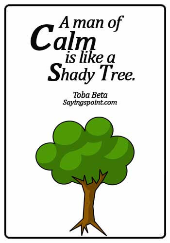 Keep Calm Quotes - A man of calm is like a shady tree. - Toba Beta