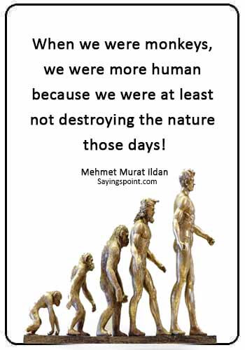 """Monkey Sayings -""""When we were monkeys, we were more human because we were at least not destroying the nature those days!"""" —Mehmet Murat ildan"""