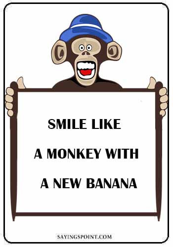 """Monkey Quotes - """"Smile like a monkey with a new banana."""" —Unknown"""