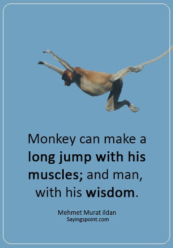 """Monkey Sayings - """"Monkey can make a long jump with his muscles; and man, with his wisdom."""" —Mehmet Murat ildan"""