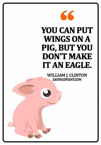"""Pig Quotes - """"You can put wings on a pig, but you don't make it an eagle."""" —William J. Clinton"""