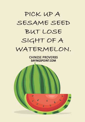 """watermelon sayings - """"Pick up a sesame seed but lose sight of a watermelon."""""""