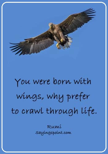 "rumi quotes images - ""You were born with wings, why prefer to crawl through life."" —Rumi"
