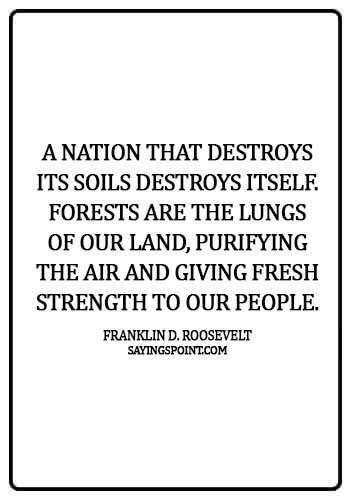 environment quotes for school - A nation that destroys its soils destroys itself. Forests are the lungs of our land, purifying the air and giving fresh strength to our people.