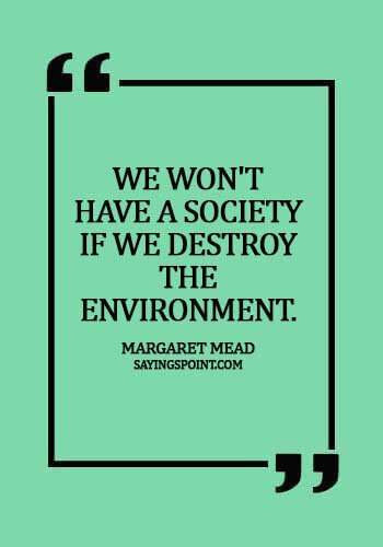 sayings about environment tagalog - We won't have a society if we destroy the environment.