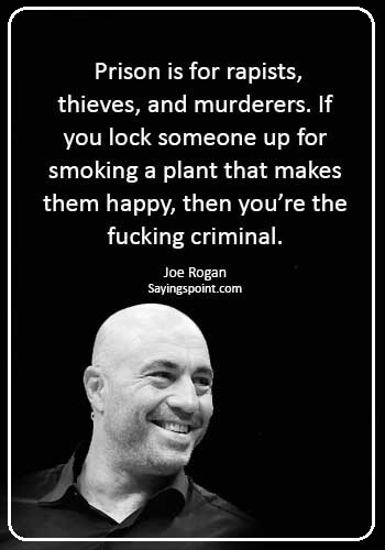 "funny smoking weed quotes - ""Prison is for rapists, thieves, and murderers. If you lock someone up for smoking a plant that makes them happy, then you're the fucking criminal."" —Joe Rogan"