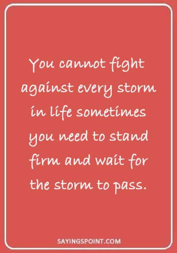 "Storm Quotes - ""You cannot fight against every storm in life sometimes you need to stand firm and wait for the storm to pass."""