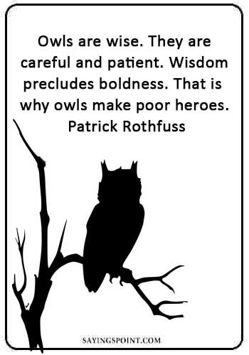 "Owl Sayings - ""Owls are wise. They are careful and patient. Wisdom precludes boldness. That is why owls make poor heroes."" —Patrick Rothfuss"