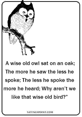 "wise old owl sayings - ""A wise old owl sat on an oak; The more he saw the less he spoke; The less he spoke the more he heard; Why aren't we like that wise old bird?"""