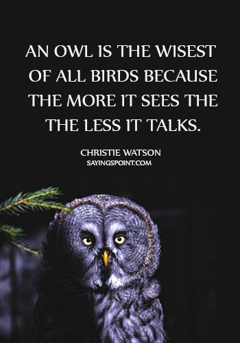 "wise old owl sayings - ""An owl is the wisest of all birds because the more it sees the the less it talks."" —Christie Watson"