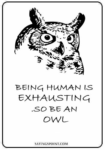 "owl quotes - ""Being human is exhausting .So be an owl."""
