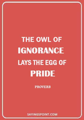 """Owl Sayings - """"The owl of ignorance lays the egg of pride."""" —Proverb"""