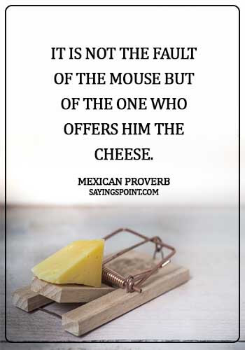 Cheese Sayings - It is not the fault of the mouse but of the one who offers him the cheese