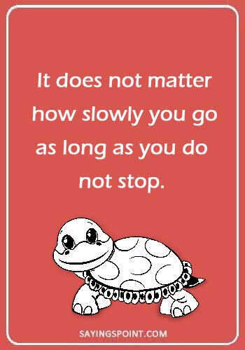 55 Turtle Quotes And Sayings Sayings Point