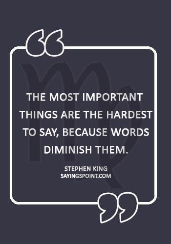 """virgo birthday quotes - """"The most important things are the hardest to say, because words diminish them."""" —Stephen King"""