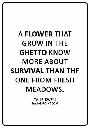 "Ghetto Sayings - ""A flower that grow in the ghetto know more about survival than the one from fresh meadows."" —Talib Kweli"